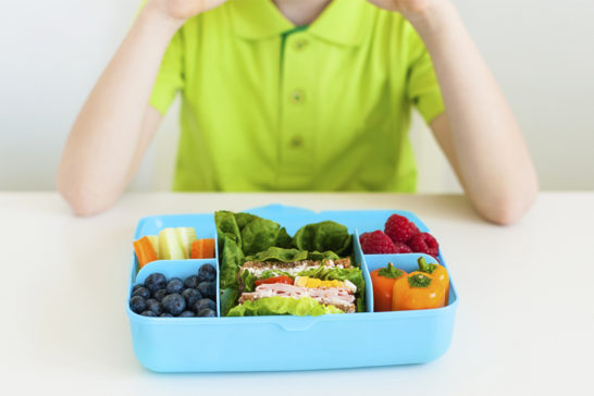 healthy kids ebook